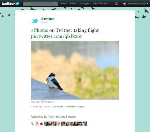 Twitter_photosharing